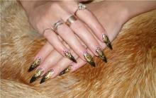 Роспись ногтей (форма стилеты)